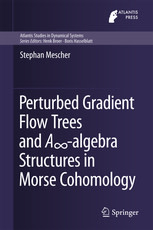 Perturbed Gradient Flow Trees and A∞-algebra Structures in Morse Cohomology