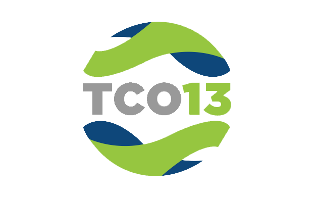 Logo for TCO13