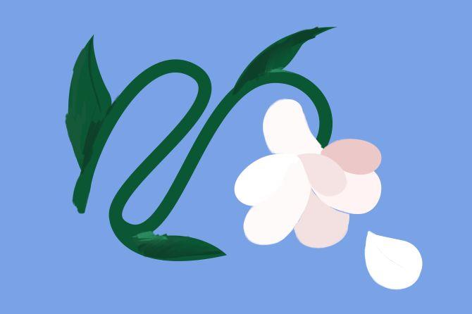 Flowers.ie Trustpilot case study