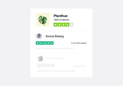 SE - Company Reviews