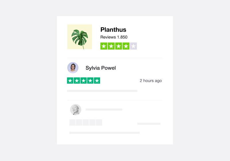 Illustration of a Trustpilot company review
