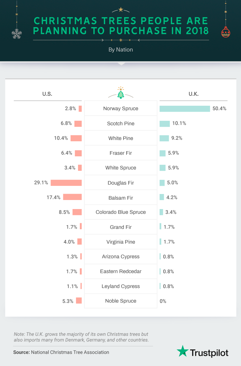 Trustpilot-Christmas-survey-asset01D