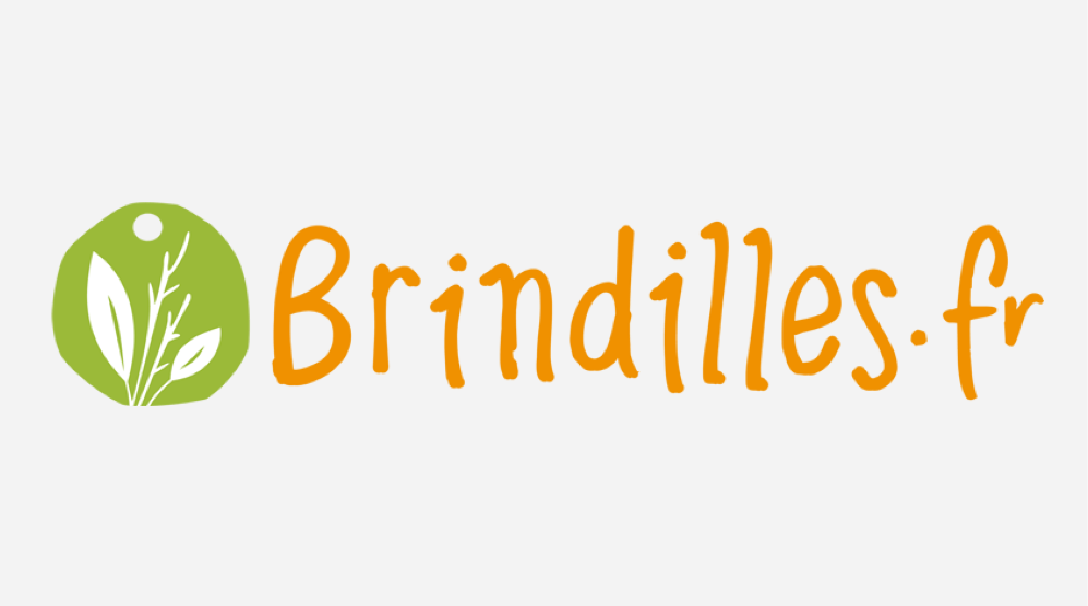 brindilles-fr-logo-grey-background-case-study