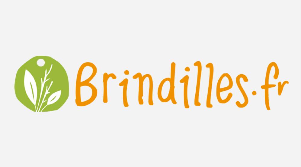 brindilles-fr-logo-grey-background-case-study