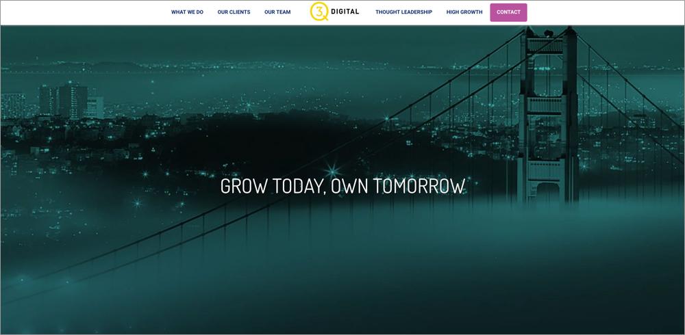 partner screenshot q3digital