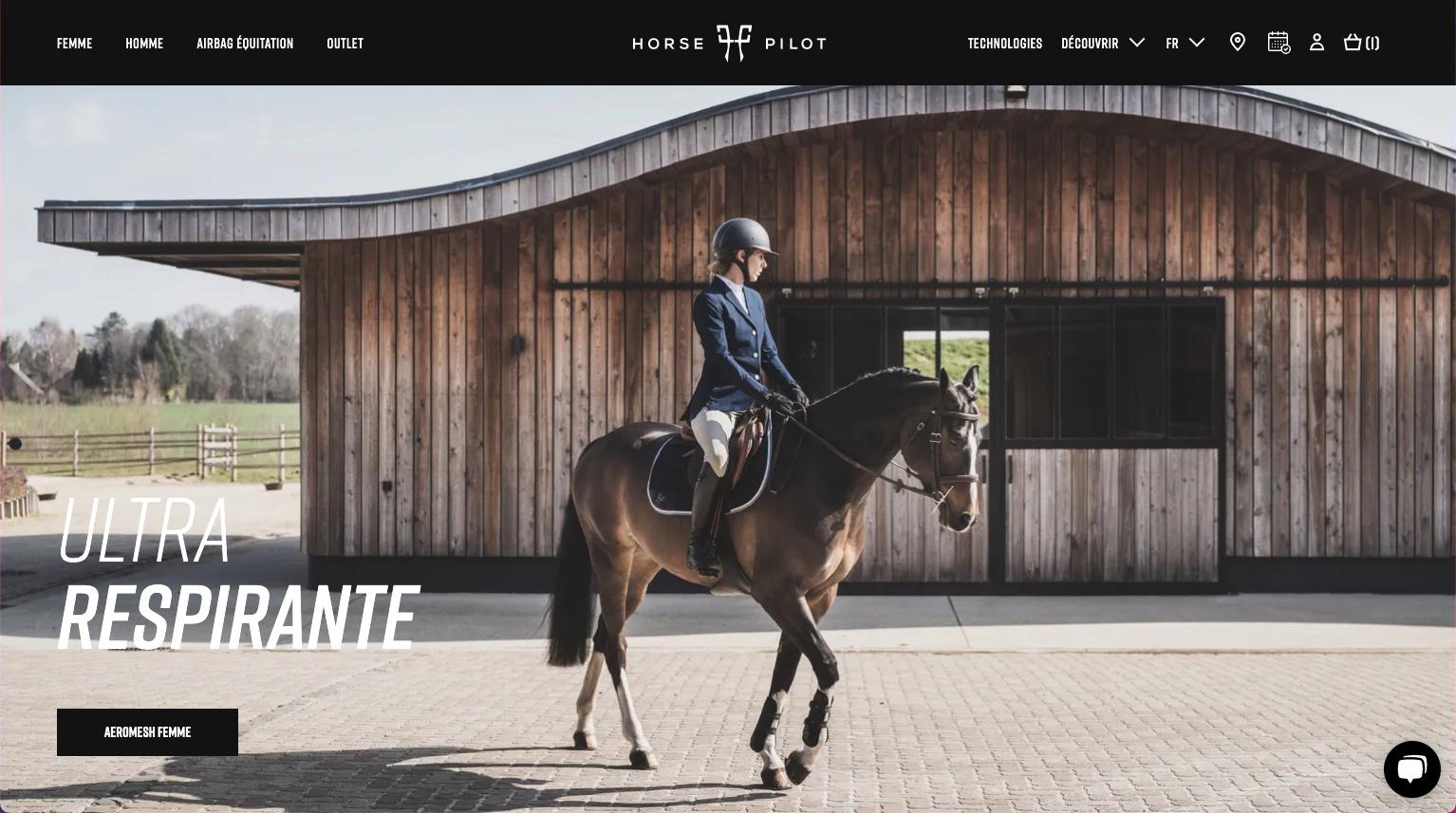 Homepage Horse Pilot