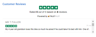 Example of on-page product reviews achieved with Trustpilot's TrustBoxes