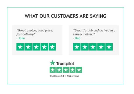 tp customer ratings