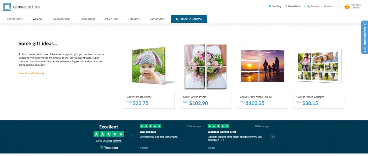Canvas Factory customer reviews on home page