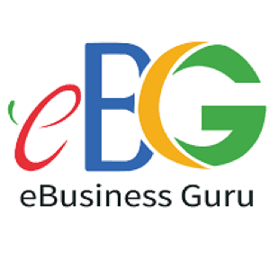 EBusiness Guru icon
