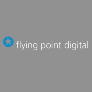 logo flying-point-digital uk 300x300 bg
