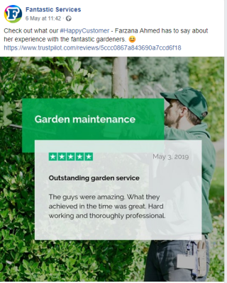 Fantastic services Trustpilot review social