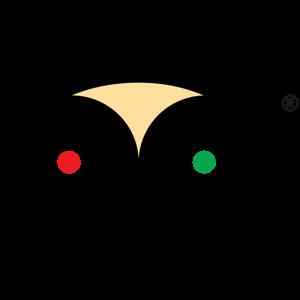logo tripadvisor 300x300 square