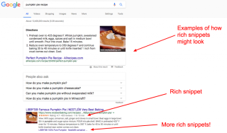 Examples of Rich Snippets in SERPs