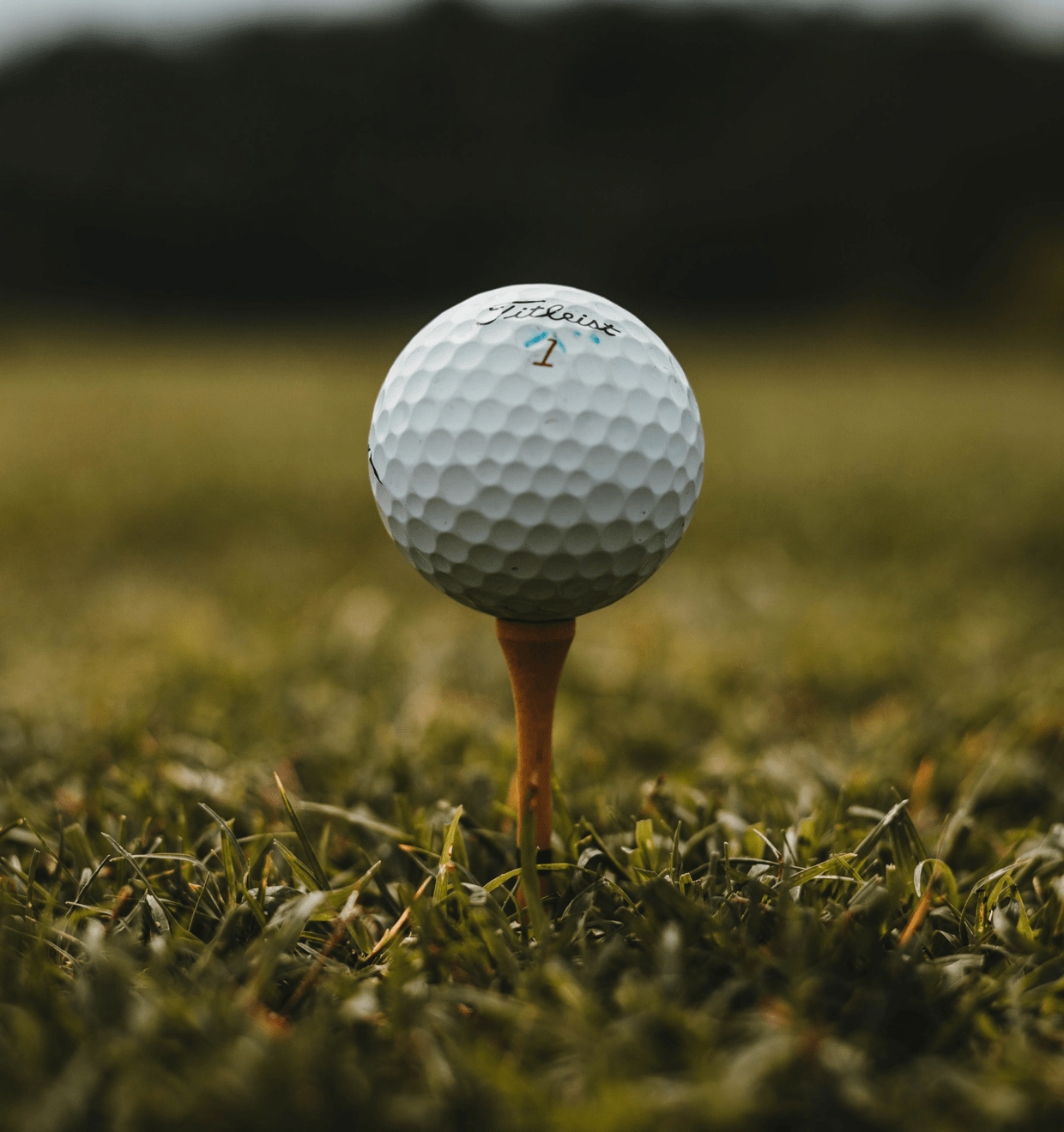 Photo of a golf tee and golf ball on green grass