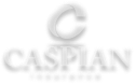 Caspian Insurance Logo - transparent background