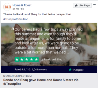 Home and Roost trustpilot review