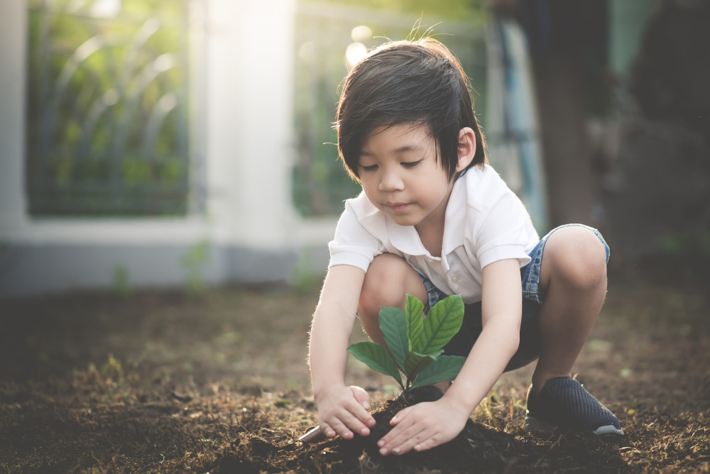 GettyImages-925565208 - Child Planting Sapling