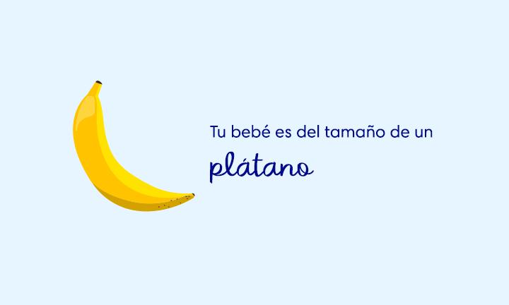 baby size of banana week 21