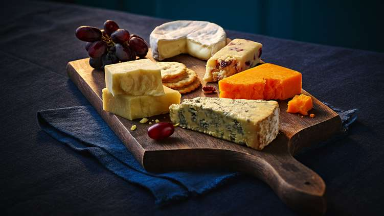 Cheese-1008x567