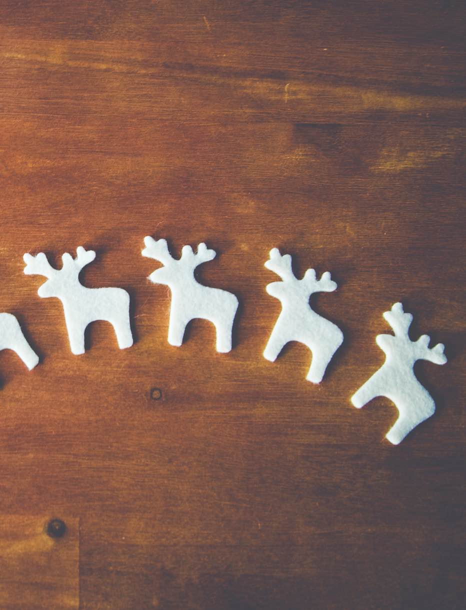 Getting Your Reindeer In a Row