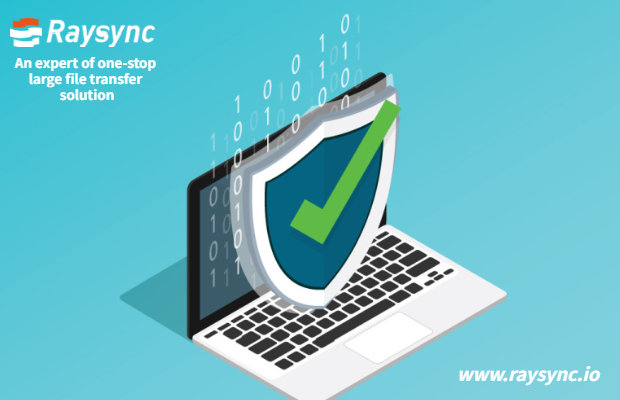 Raysync Security Design: Software Installation