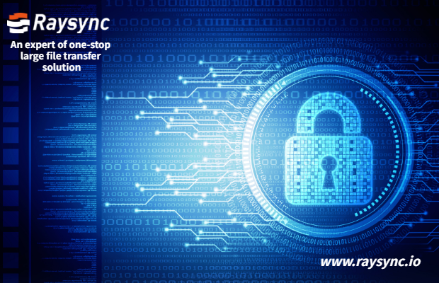 Raysync Security Design: Web Security