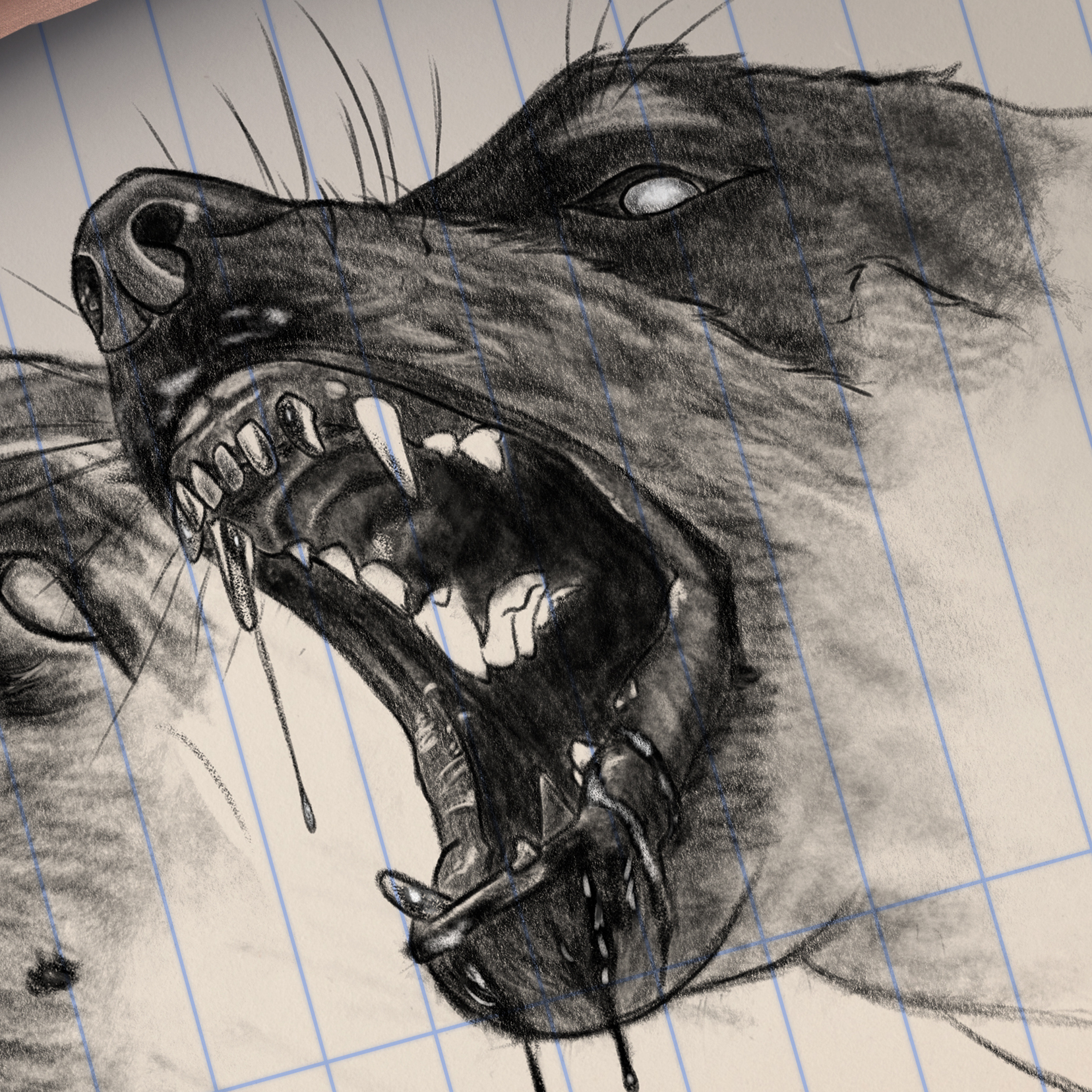 "Close-up of the dogs face in ""pencil"""