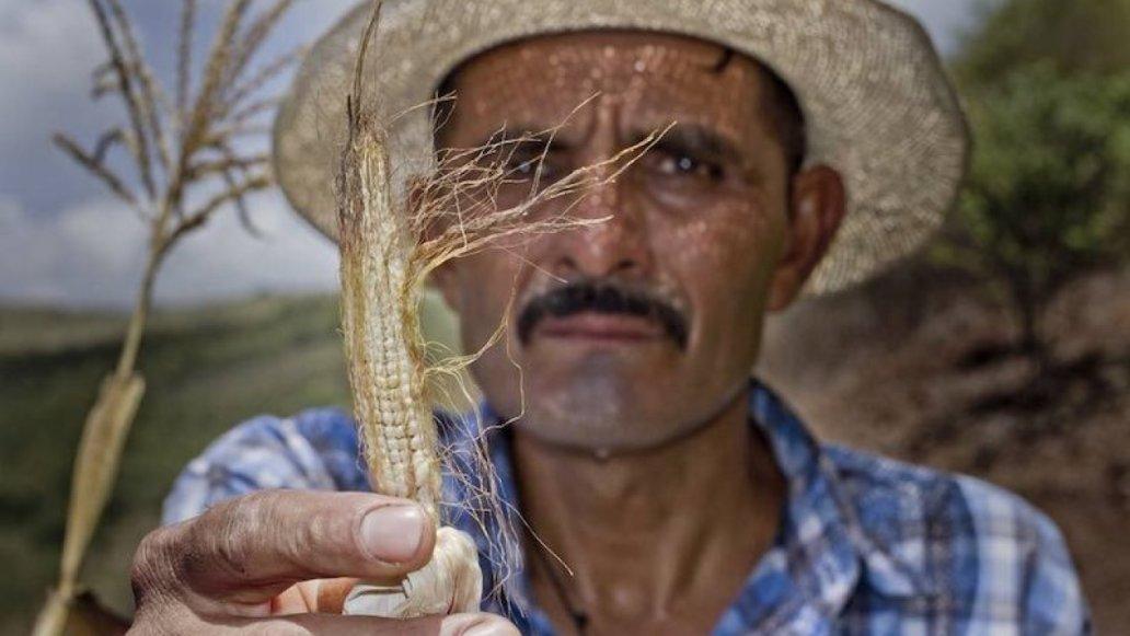 Guatemalan farmer
