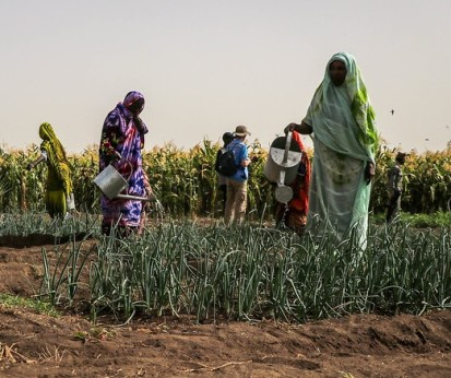 IDP women watering vegetables they produce