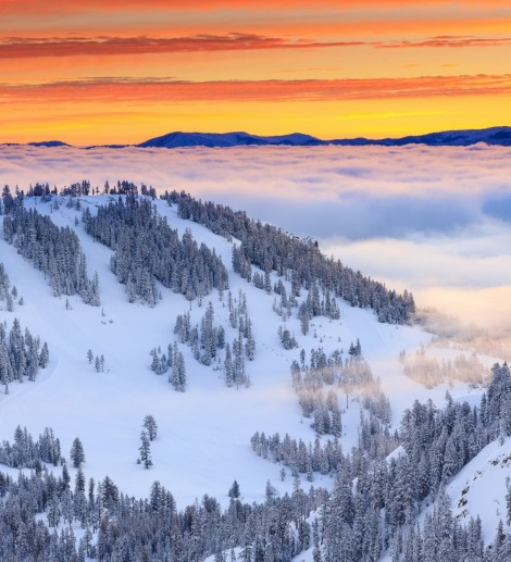 Squaw Valley Alpine Meadows, California Feature Image