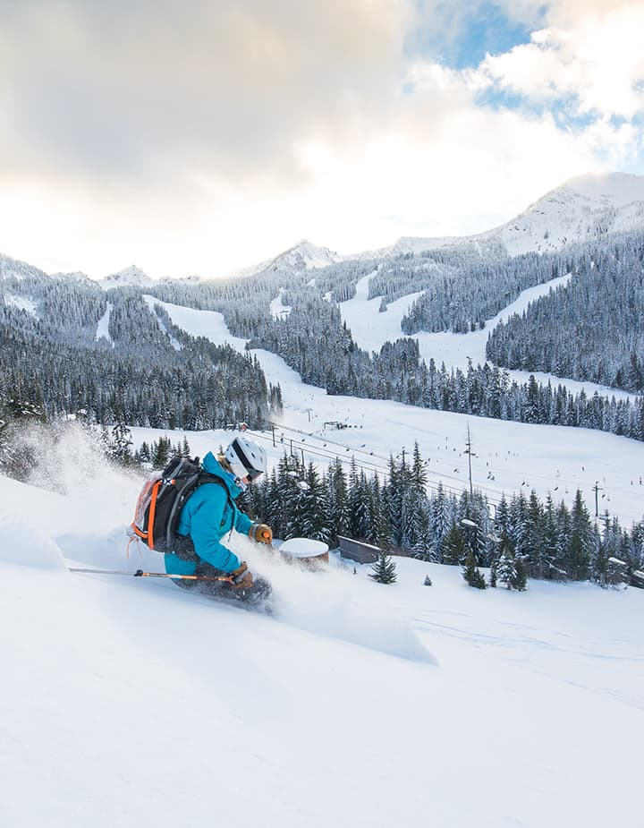 Crystal Mountain extreme skier in powder
