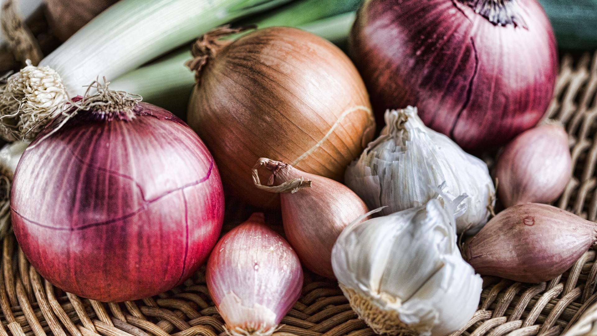 Aliments prébiotiques (oignon et ail)