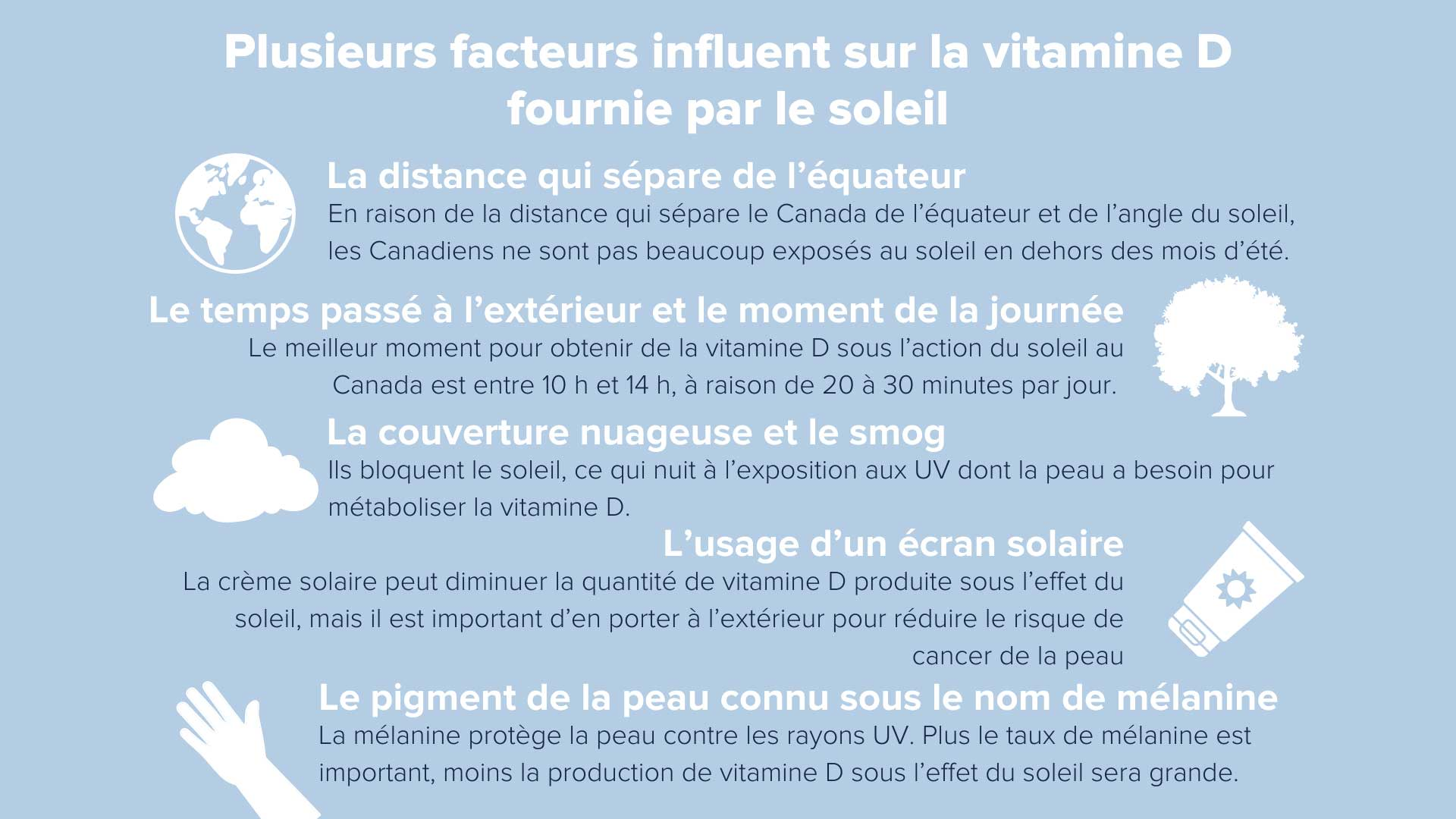 Infographie sur les facteurs qui affectent l'apport en vitamine D par le soleil