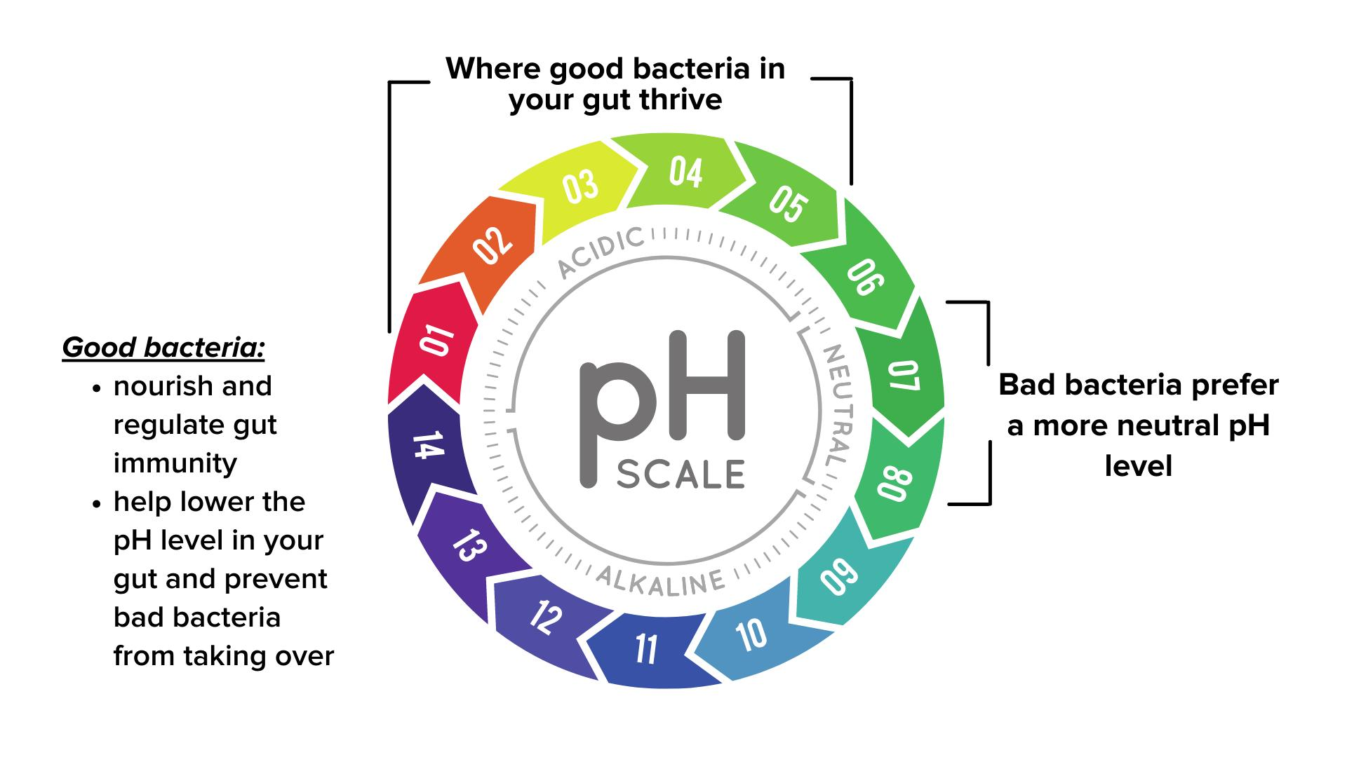 pH levels in the stomach
