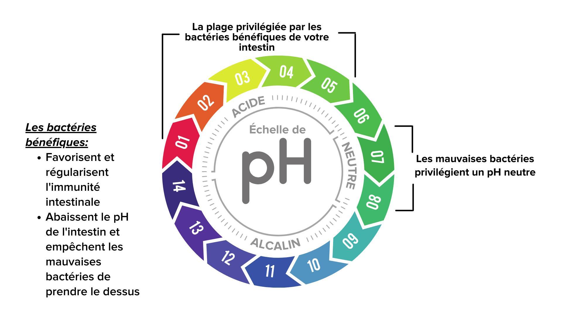 Étiquette de titre : pH dans l'estomac