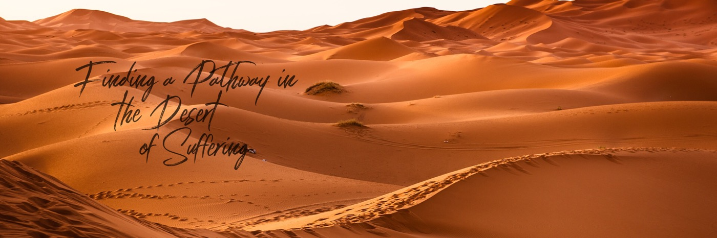 Blog Header Image  Finding a pathway in the desert of suffering