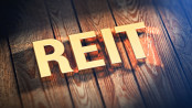 "The acronym ""REIT"" in gold lettering"