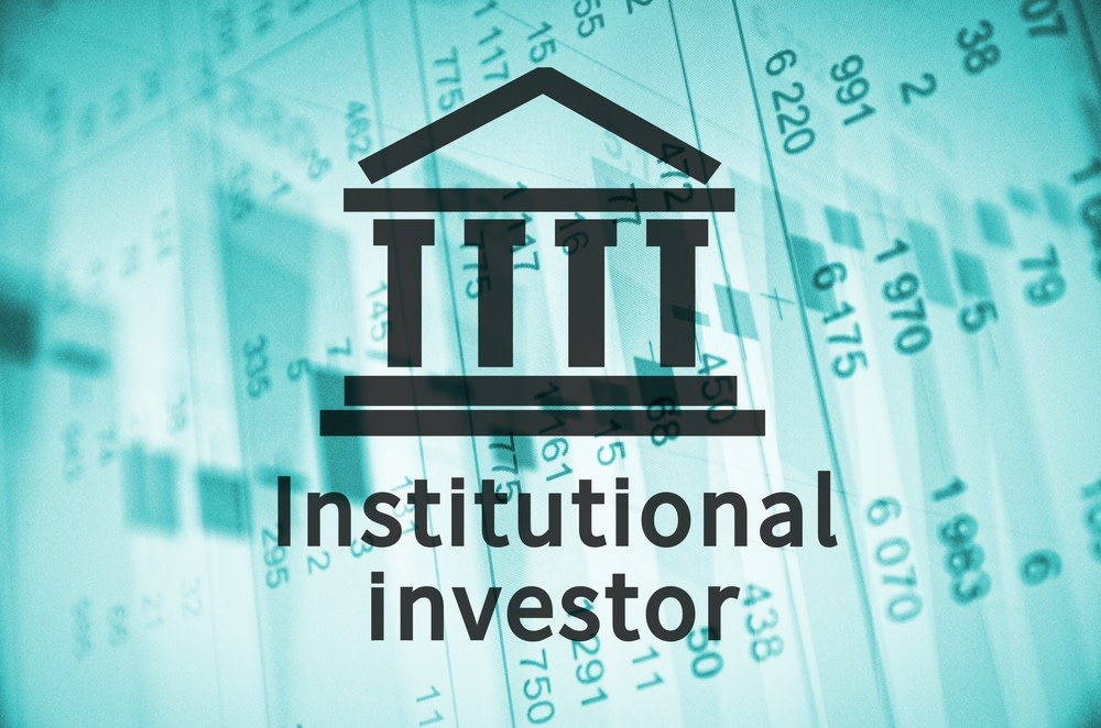 Who Are Institutional Investors?