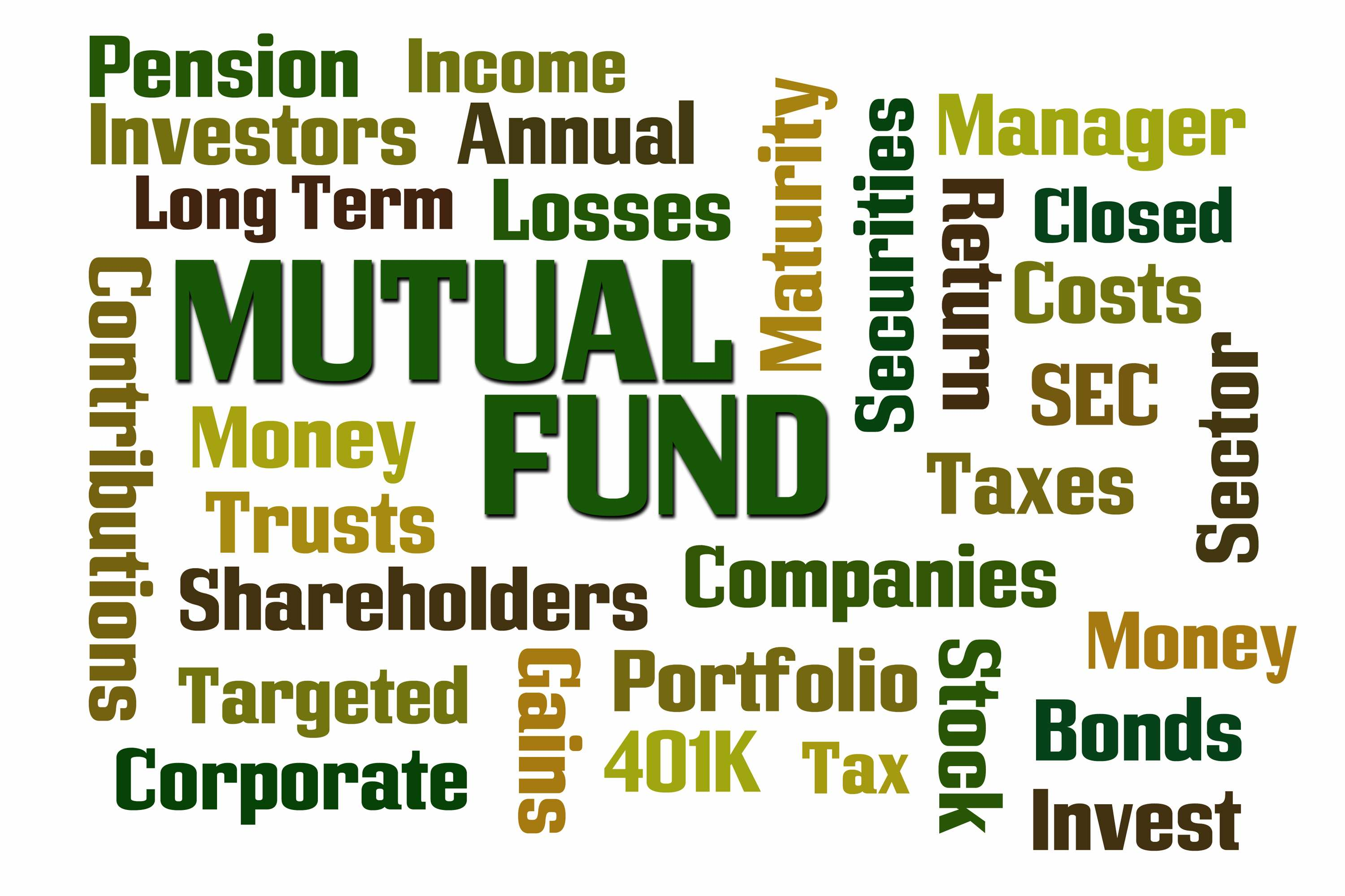 Mutual Fund Diversification Fundamentals