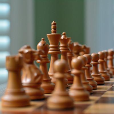 Шахматы санаторий МЧС