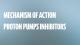 Mechanism of action Proton Pumps Inhibitors