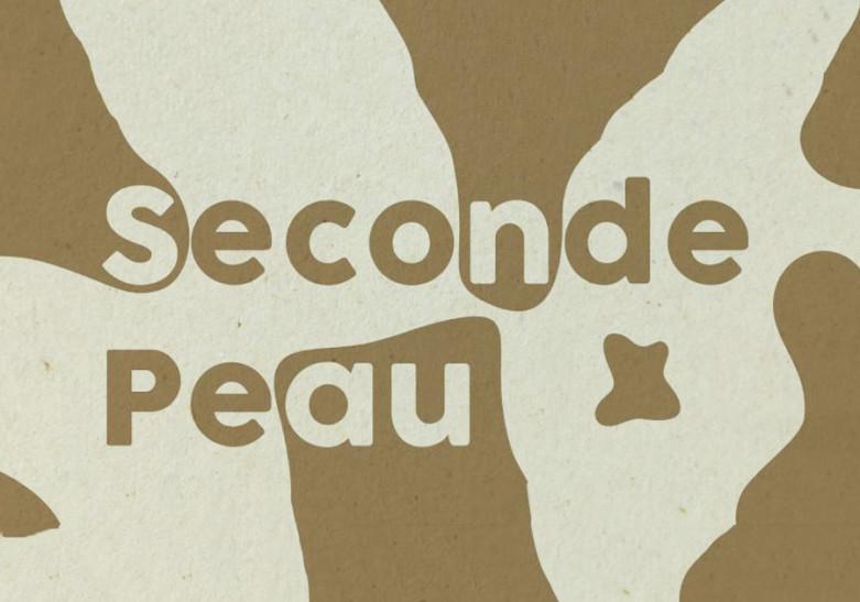 Depliant Papier maroquinerie