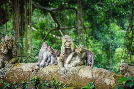 Ubud Sacred Monkey Forest Sanctuary