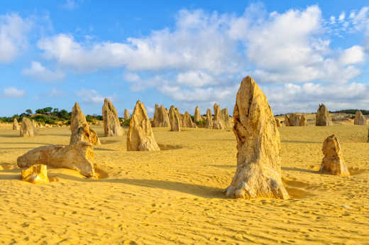 Perth Pinnacles Desert