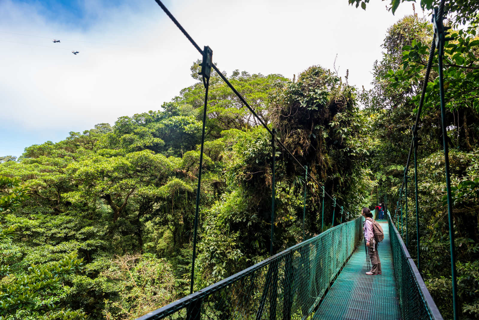 A hanging bridge in Monteverde, Costa Rica