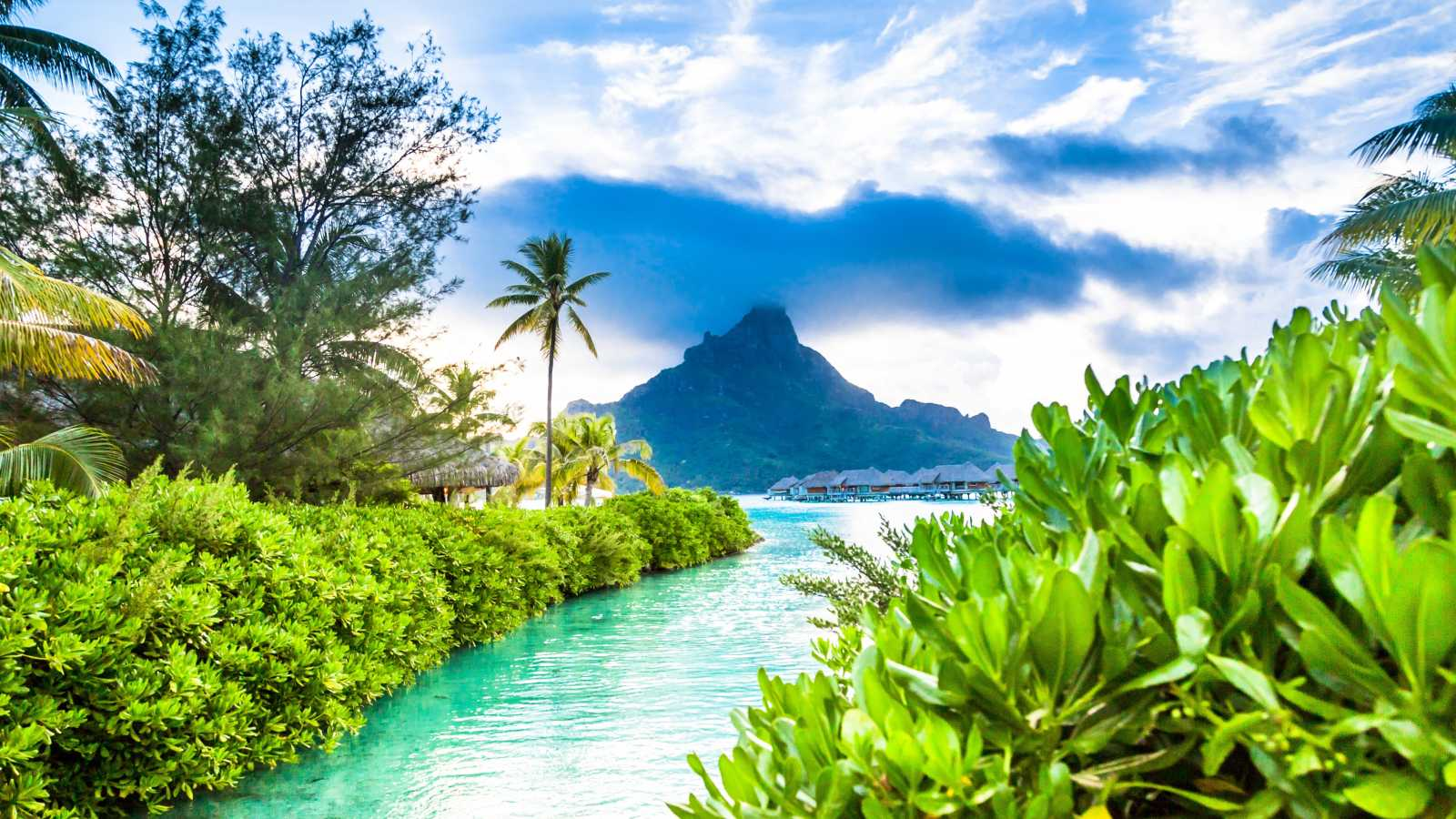 Go on a French Polynesia vacation to see turquoise waters surrounded by greenery, giving way to the ocean and a mountain looms in the background.