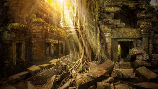 Tree root covered Ta Prohm temple near Siem Reap Cambodia
