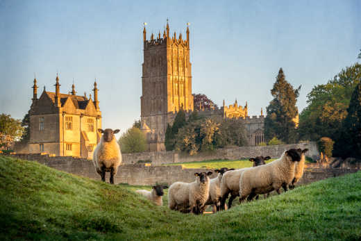 Discover the beautiful Chipping Campden and its churches and sheep on a Cotswolds tour