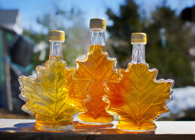 Enjoy the taste of maple syrup during your travel to Ontario.
